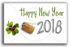 E-Card: Happy New Year NSL-2018-00275