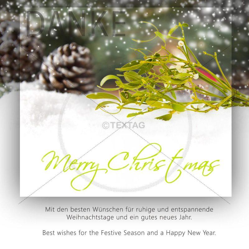 Weihnachts E-Card mit Mistelzweig NSL-2018-00221