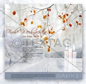 E-Card - Weihnachtskarte ohne Werbeinschaltung NSL-2018-00104