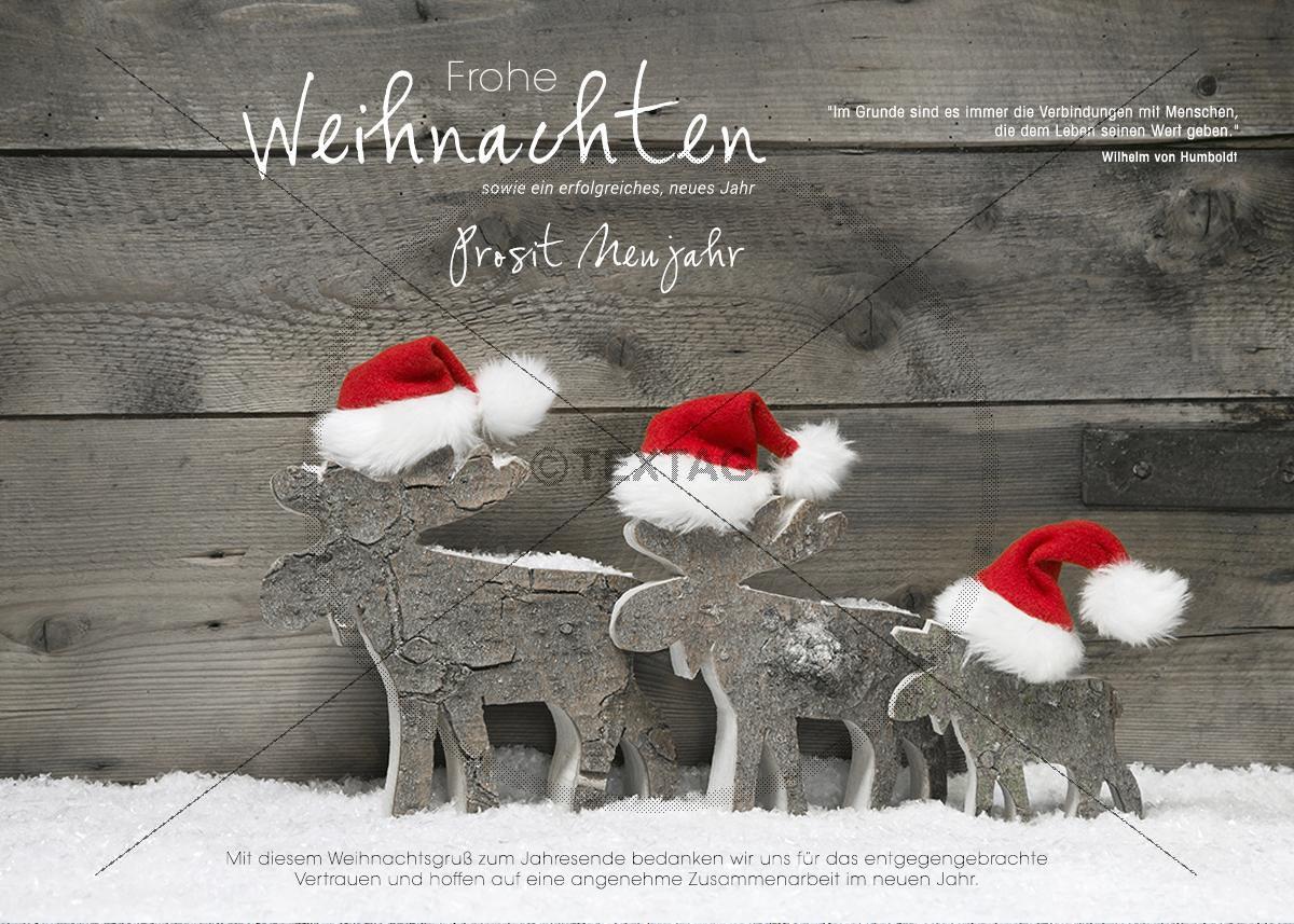 lustige Weihnachts-Card - Elche mit Weihnachtsmütze (316 ...