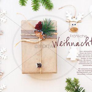 lustige, nostalgische Weihnachts-E-Card mit Elch (336)