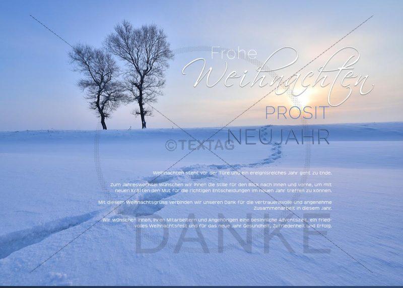 winterliche Weihnachts eCard für Kunden NSL-2019-00208