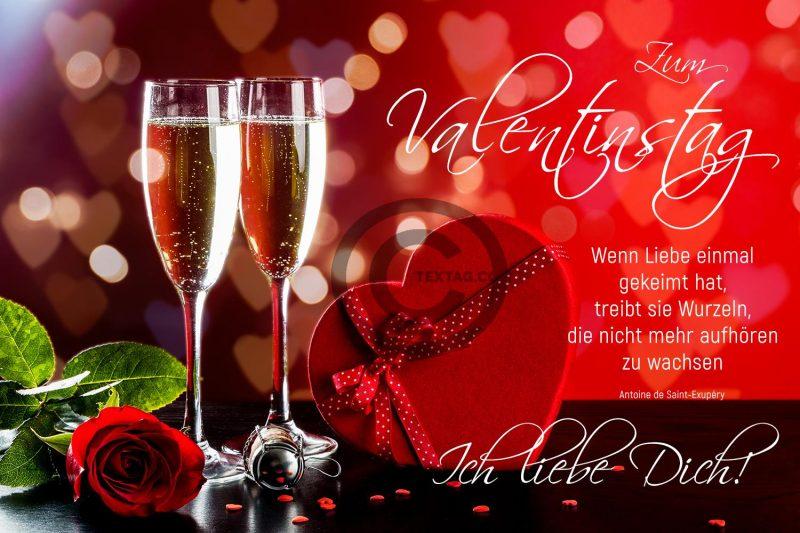 romantische Valentinstag E-Cards für umweltbewusste Liebende (00463)