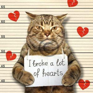 """witzige Valentinstag E-Card """"Ich habe viele Herzen gebrochen"""" (00481)"""
